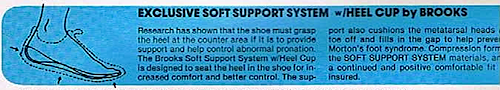ソフト・サポート・システム(Soft Support System)