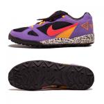 ナイキ・エアテラ ACG(Nike Air Terra  ACG)